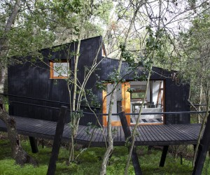 Modern Tree House in Curacaví, Chile