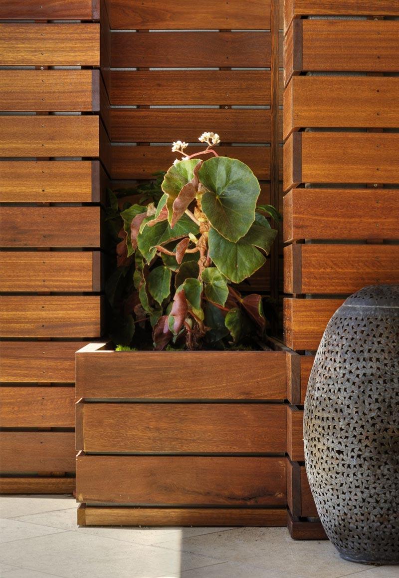 Garden Detail, Hollywood Hills Residence by fer Studio