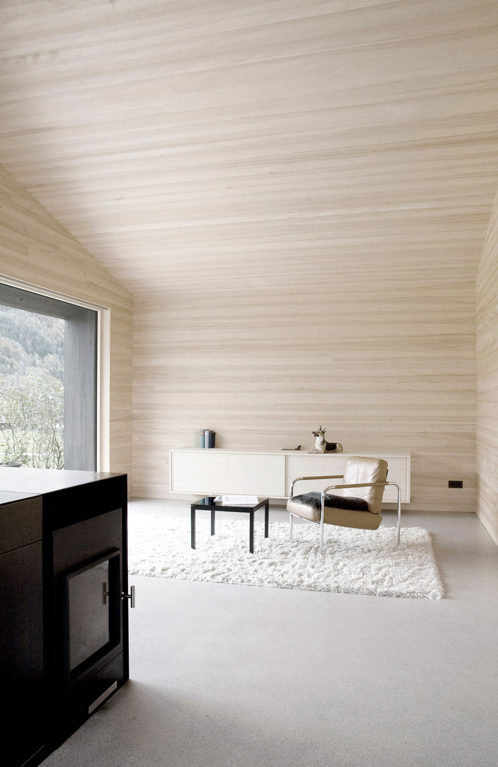 Modern Fireplace, Rug, House for Gudrun in Mellau, Austria