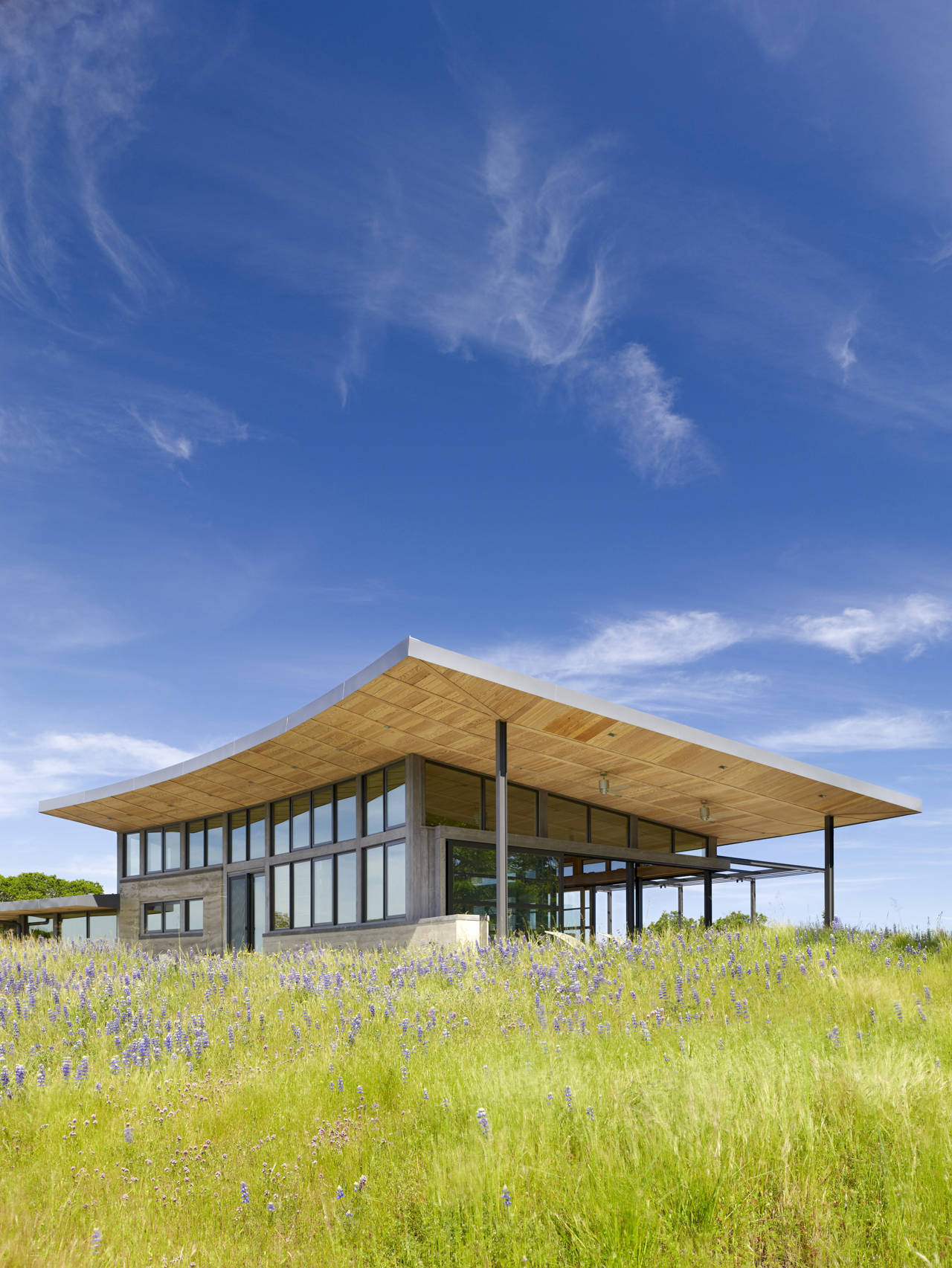Rolling Hills, Caterpillar House in Carmel, California by Feldman Architecture