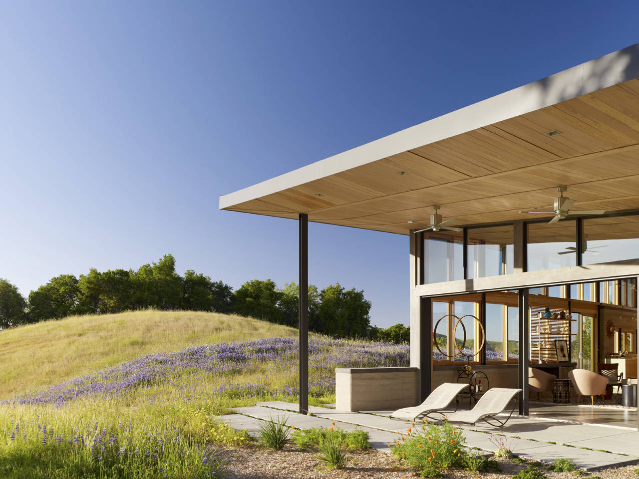Terrace Views, Caterpillar House in Carmel, California by Feldman Architecture