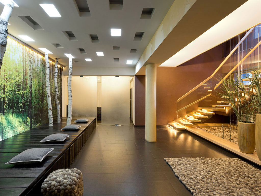 House Dnepropetrovsk Ukraine Stairs Indoor Trees