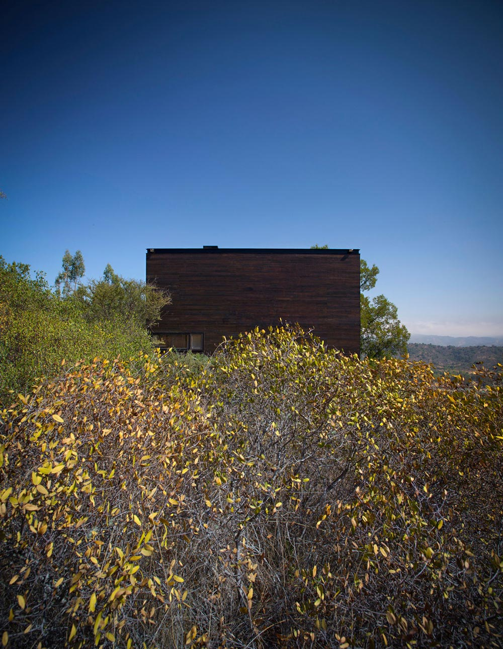 Nature, Pangal Cabin in Casablanca, Chile