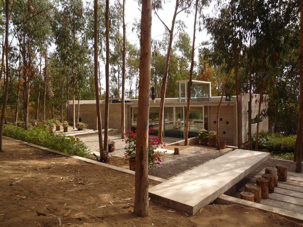 Garden, Omnibus House in Cachagua, Chile by Gubbins Arquitectos