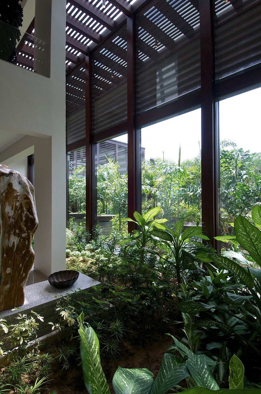 Plants, Contemporary House in Ahmedabad, India