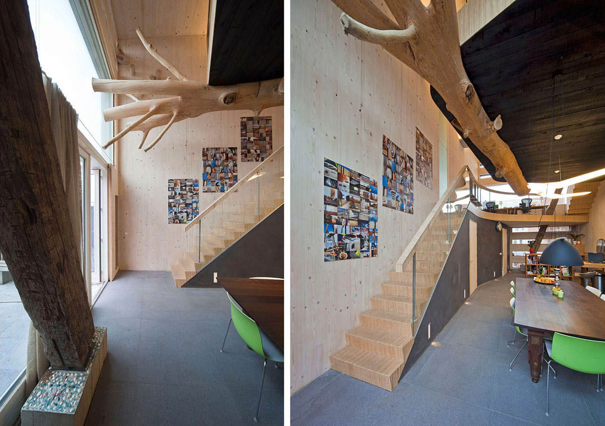 Modern Stairs, Rustic Features, Eco-Friendly House in Amsterdam