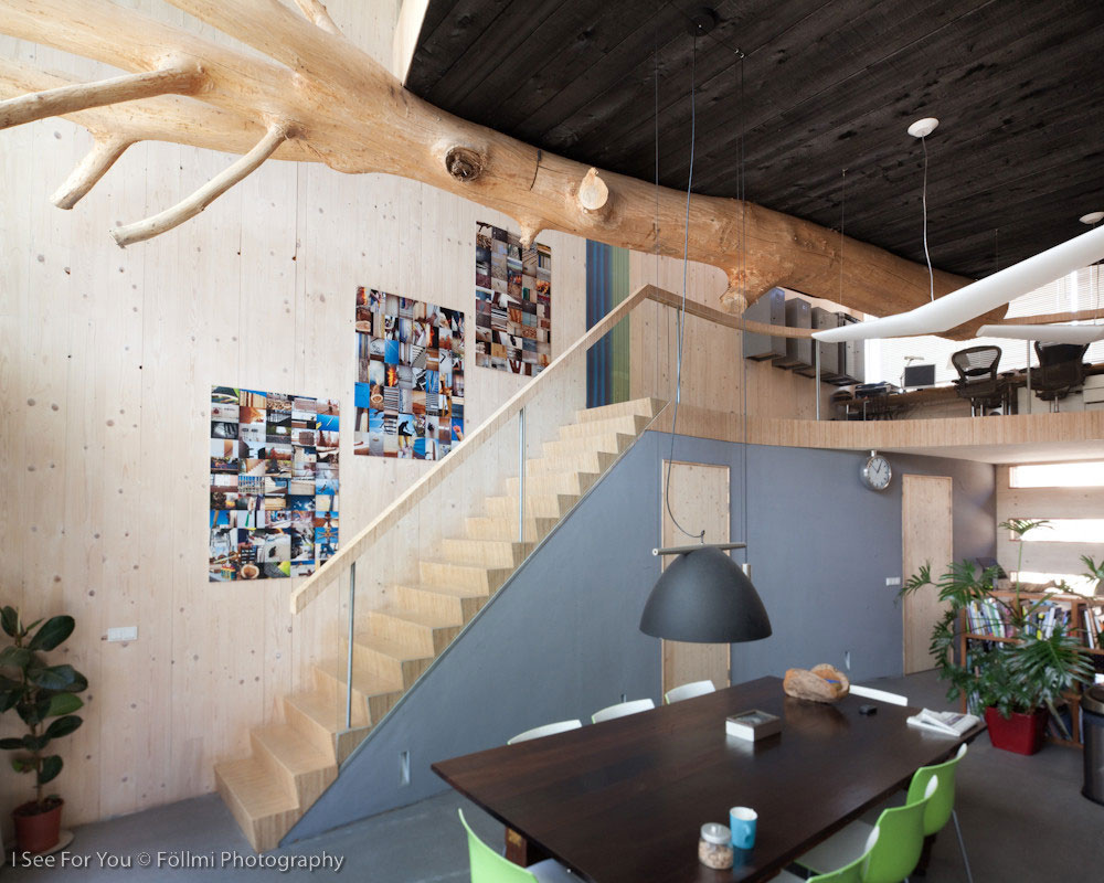 Stairs, Tree Feature, Dining Space, Eco-Friendly House in Amsterdam