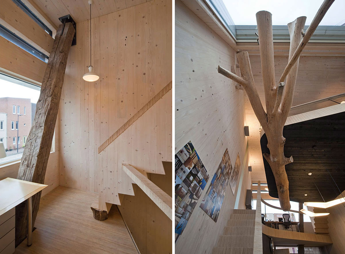 Tree & Beam Features, Eco-Friendly House in Amsterdam