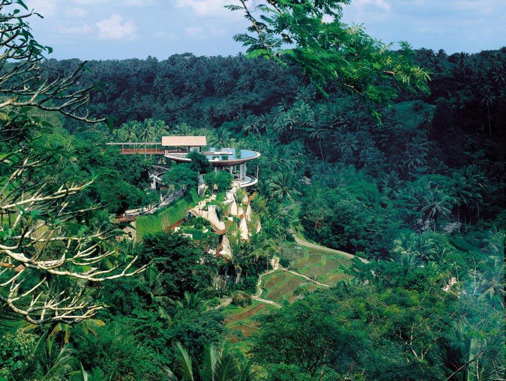 Forest Views, Four Seasons Resort Bali in Sayan, Bali