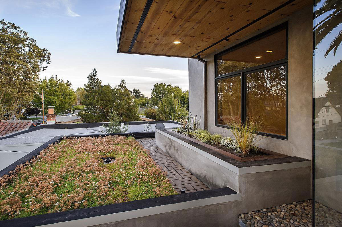 Roof Garden & Terrace, Modern Home in Burlingame, California