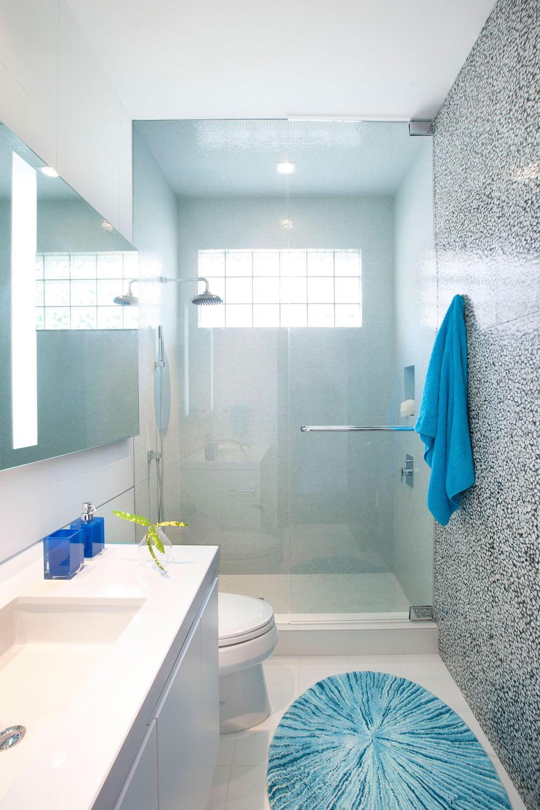 Shower, Glass Screen, Bathroom, Stylish Interior Design in Miami, Florida