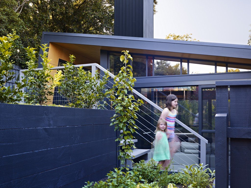 Garden, Stairs, Modern Renovation & Extension in Melbourne, Australia