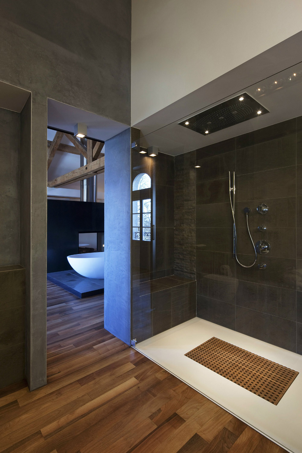 Shower, Glass Door, Farmhouse Conversion in Genf, Switzerland