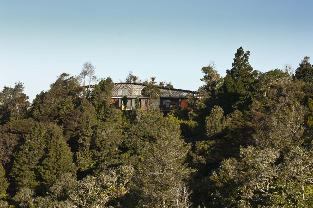 Trees, Hilltop Home with Stunning Views in Ngunguru, New Zealand