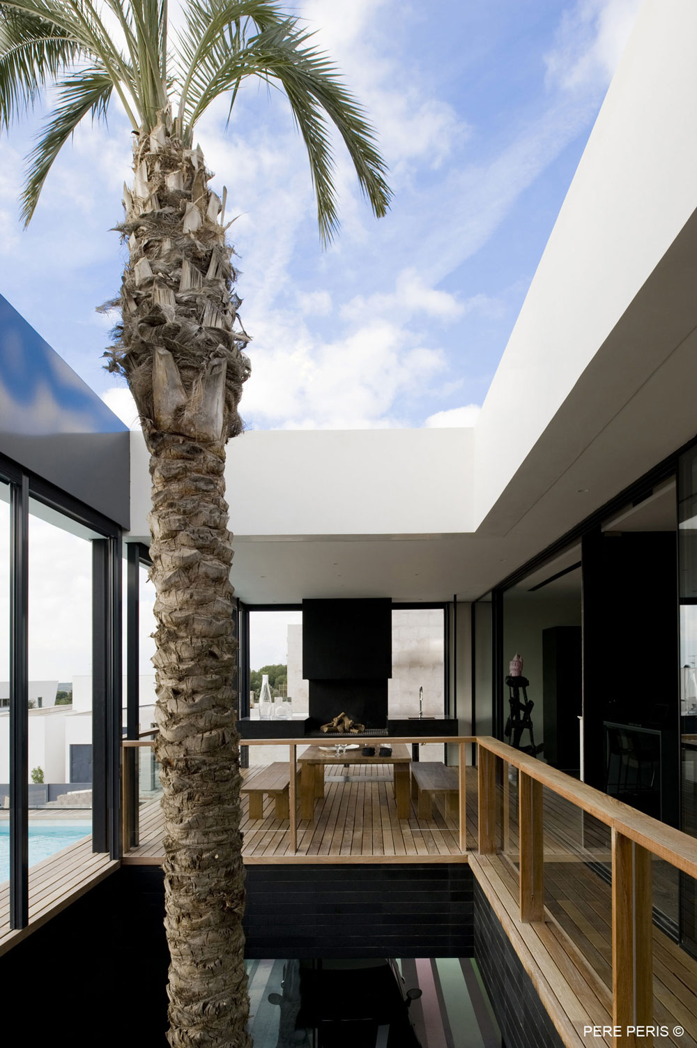 Indoor Tree, Stylish Glass Home in Valencia, Spain