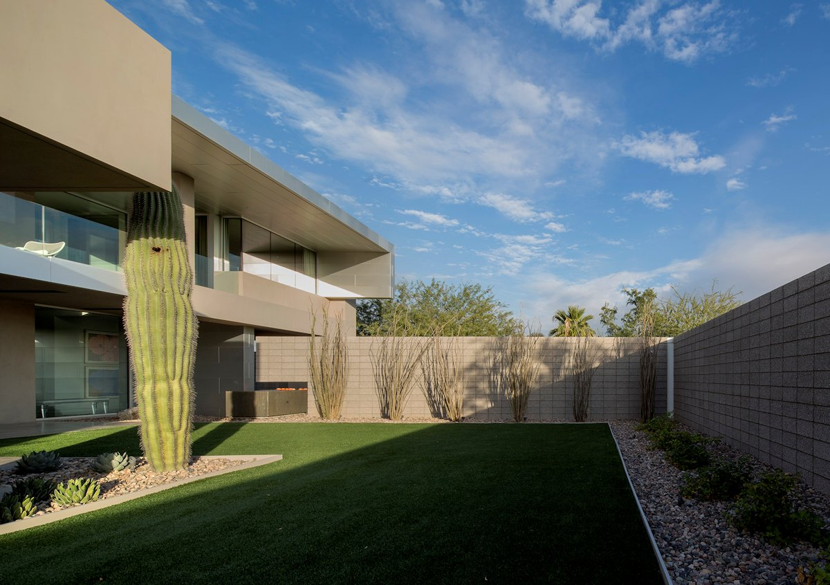 Lawn, Privacy Walls, Mid-Century Modern Home in Scottsdale, Arizona