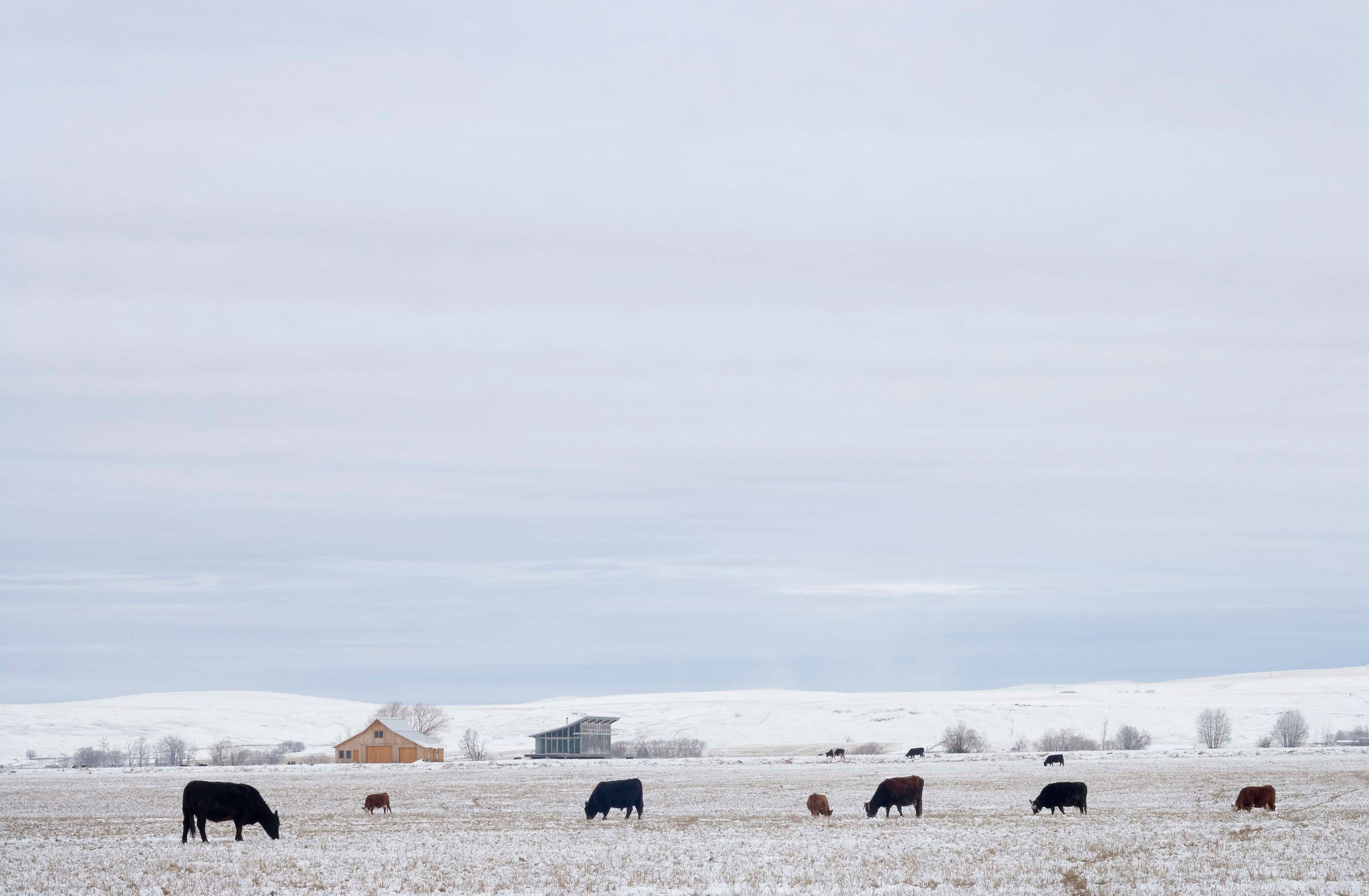Snow Fields, Glass Farmhouse in Northeast Oregon