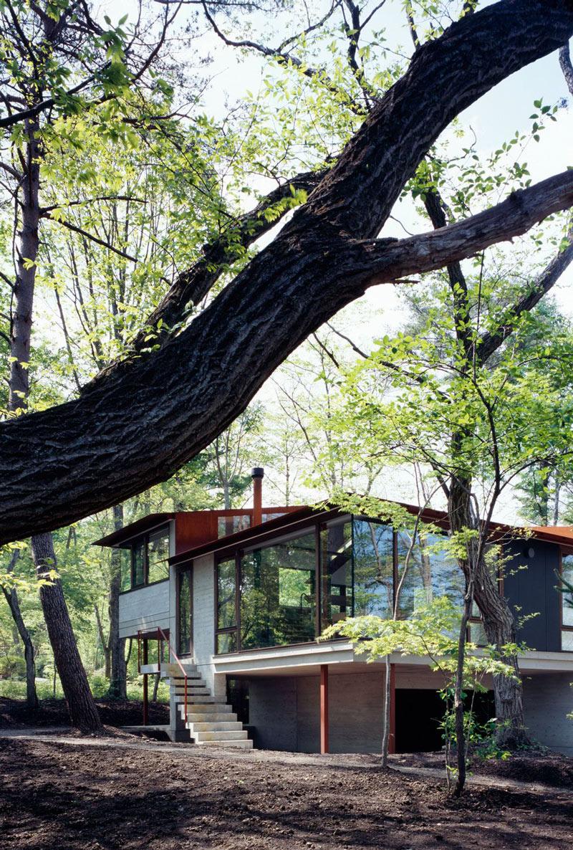 Glass Walls, Hilltop Home in Karuizawa, Japan