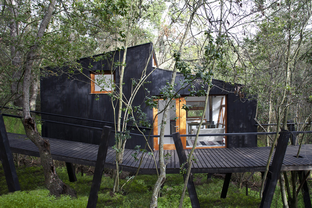 Modern Tree House in Curacaví, Chile