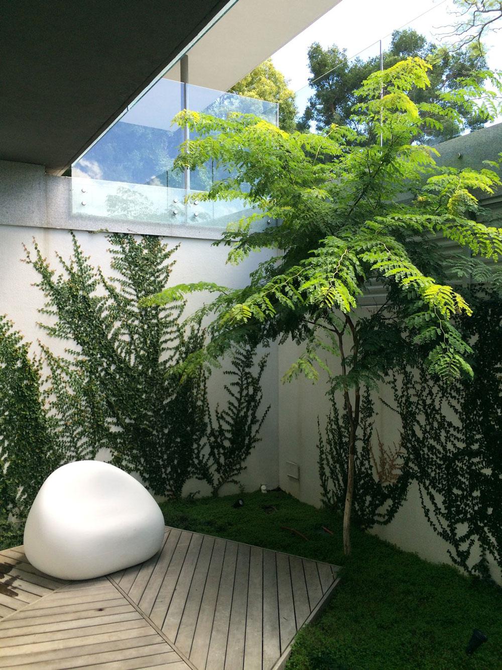 Courtyard, Garden, Art, House in Tamboerskloof, Cape Town