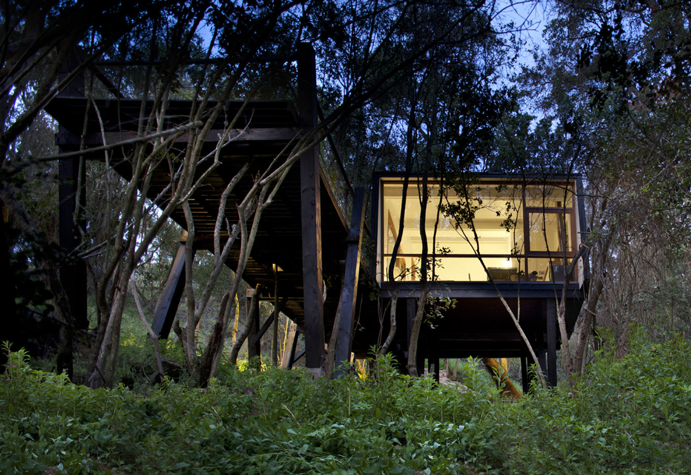 Floor-to-Ceiling Windows, Tree House in Curacaví, Chile