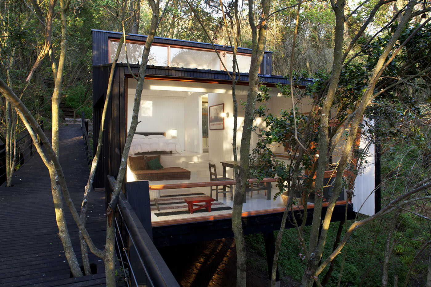 Glass Wall, Bridge, Tree House in Curacaví, Chile