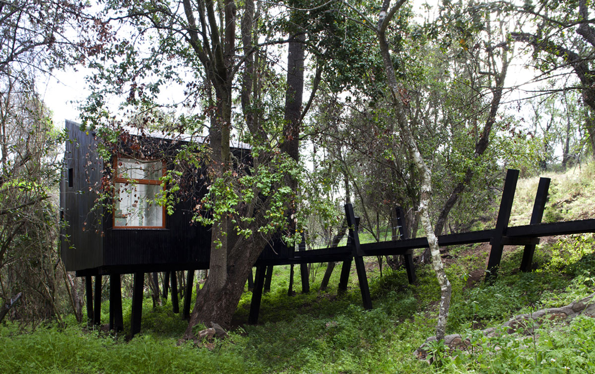 Side Facade, Tree House in Curacaví, Chile