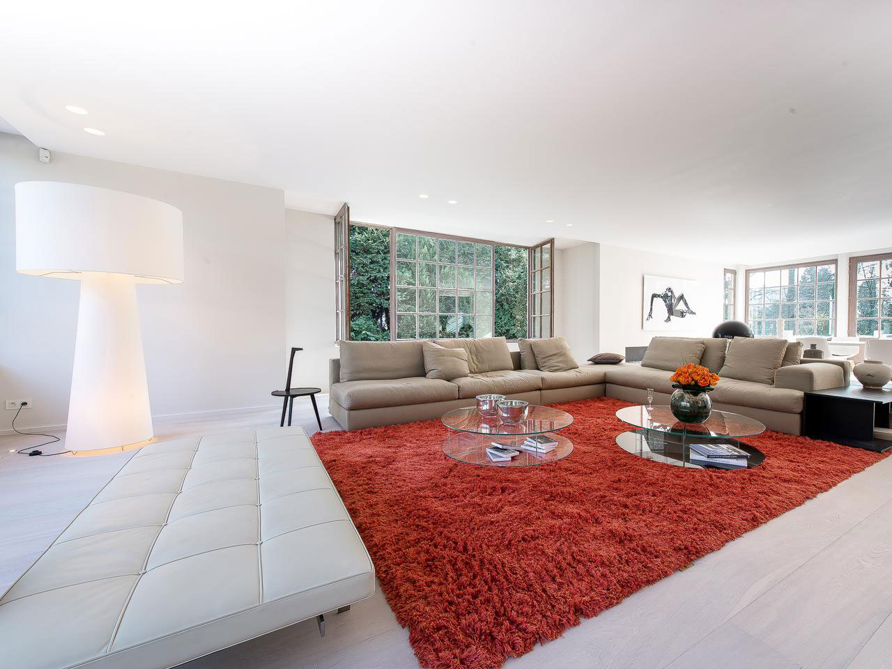 Thick Orange Rug, Sofas, Glass Coffee Tables, Living Room, House Renovation in Sint-Genesius-Rode, Belgium