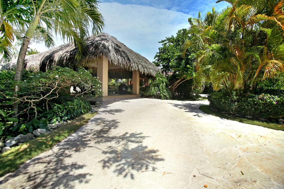 Tropical Driveway